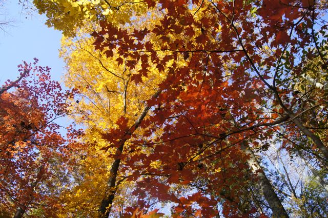 Fall evicts Summer this weekend; here's where to hike