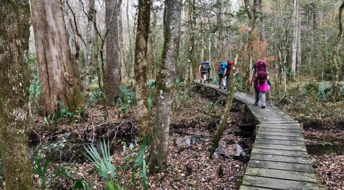 Nine Hikes Made for Hiking's Transition Month
