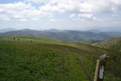Max Patch, on the AT