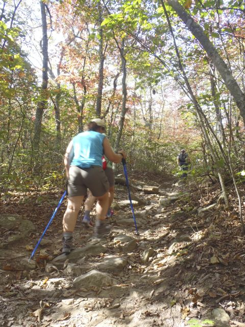 Trekking poles add years to your knees (and hiking life)
