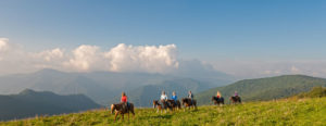 Ridin' (as opposed to runnin') the ridge at Cataloochee Ranch