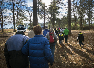 First Day Hike at Carvers Creek State Park (photo courtesy of N.C. State Parks).